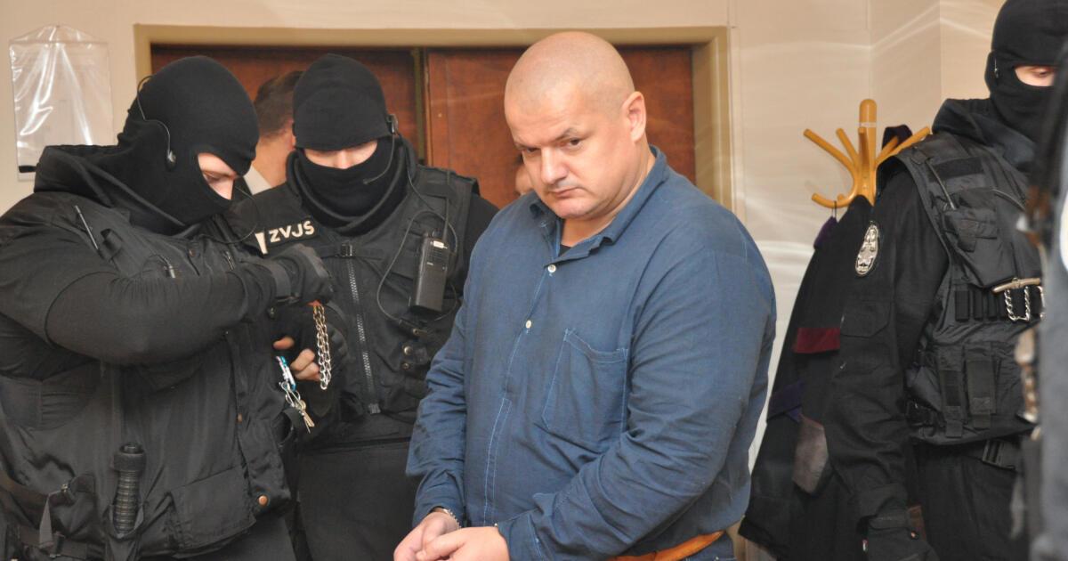 Kubašiakov vrah Petluš pôjde na slobodu o rok skôr